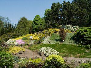 Górski Ogród Botaniczny